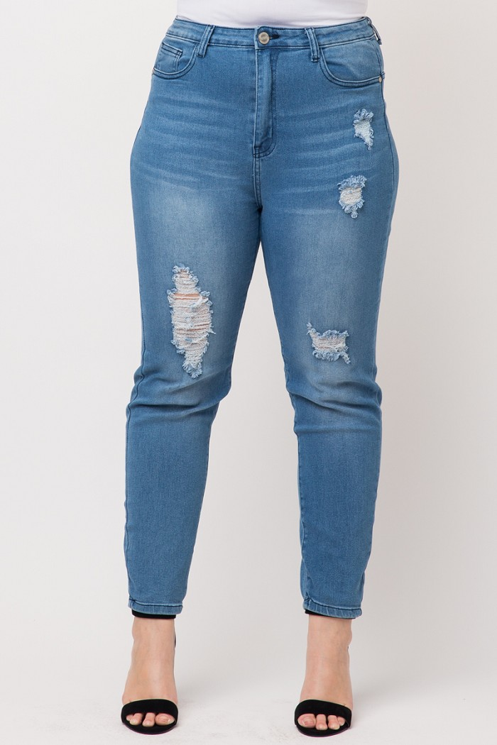 Plus Size High Waist Ripped Skinny Jeans